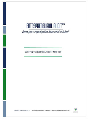 entrepreneurial audit 3 entrepreneurs have many different profiles they come from a wide range of backgrounds and age groups, and have diverse experiences and skill sets.